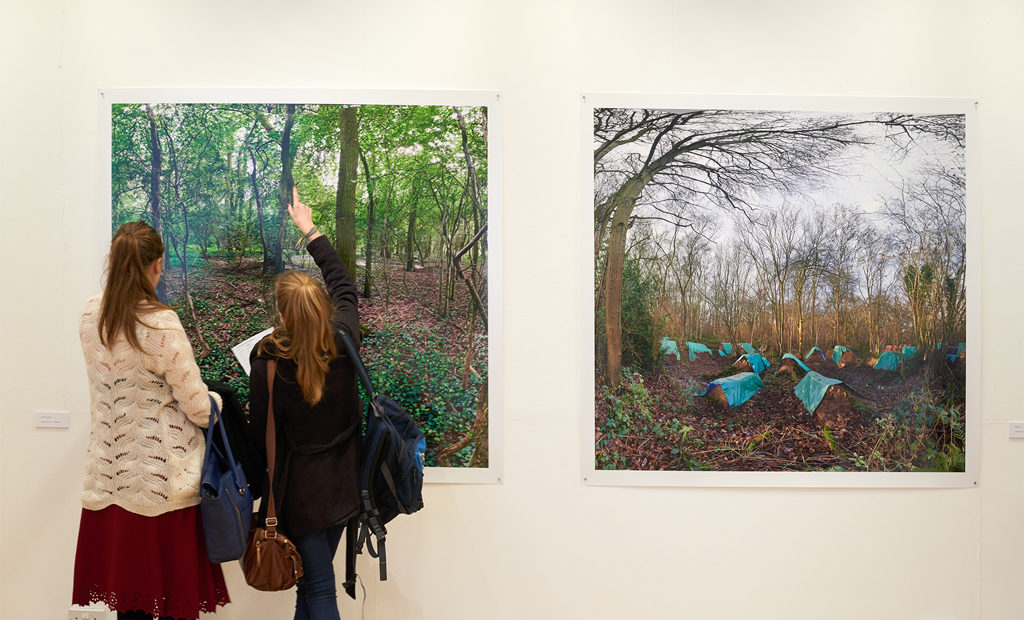 A-Deer-in-the-Wood-and-Blue-land-#3-on-exhibition