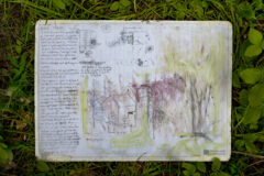 Field notes and drawings for site # 2 in situ. Pencil and vegetable matter on A3 drafting paper